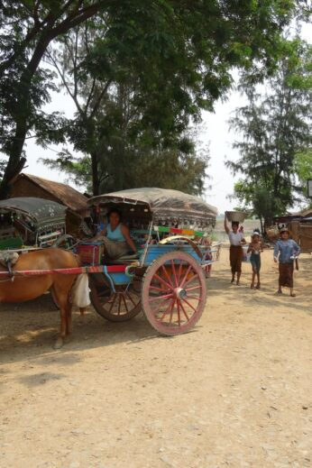Horse and Carriage - InsideBurma Tours