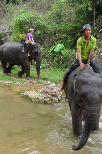 Elephant Riding - InsideBurma Tours