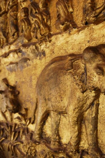 Elephant Relief in Laos