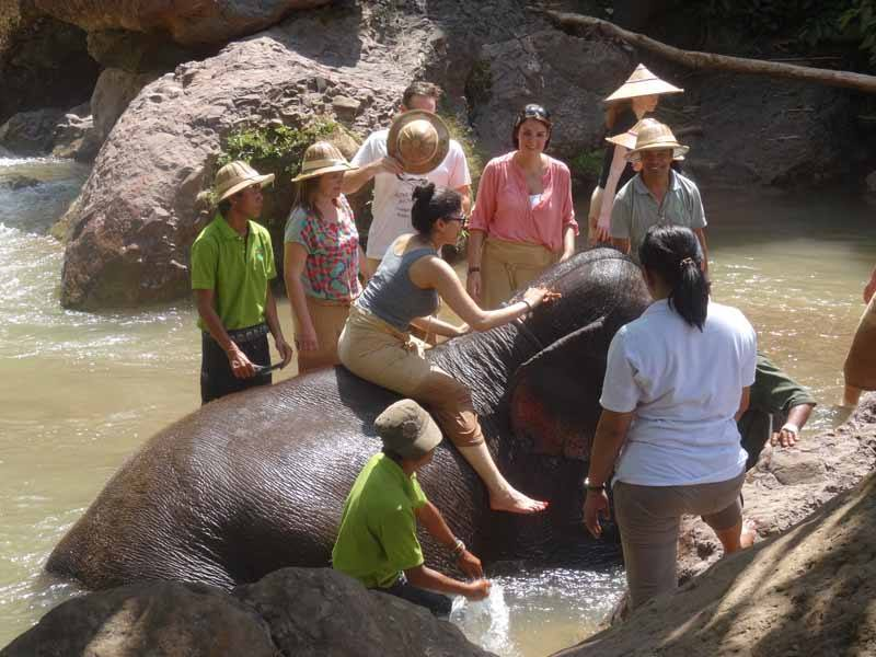 InsideAsia customers at Green Hill Valley Elephant Camp last year
