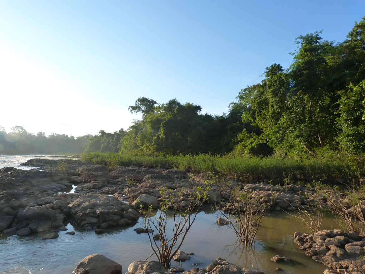 Nam Cat Tien National Park is a great place to spot rare wildlife.