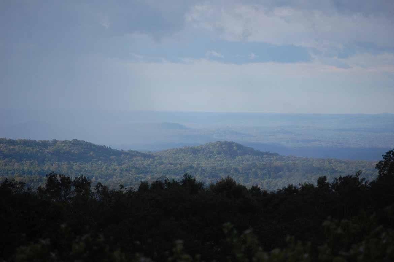 The forests of Mondulkiri
