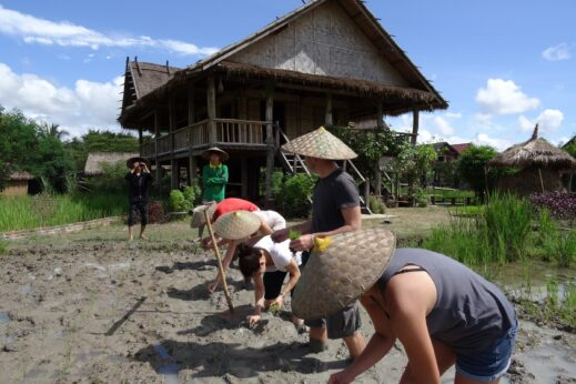 Volunteers busy working at The Living Land - Luang Prabang, Laos