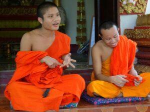 Wat Sok Pa Luang (6)