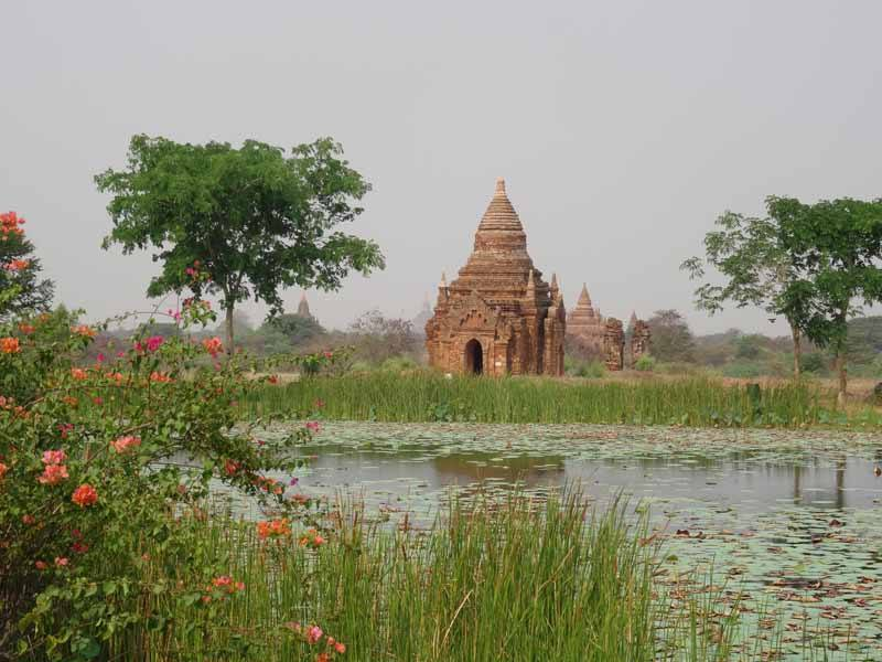 Even arid Bagan can be lush during the green season