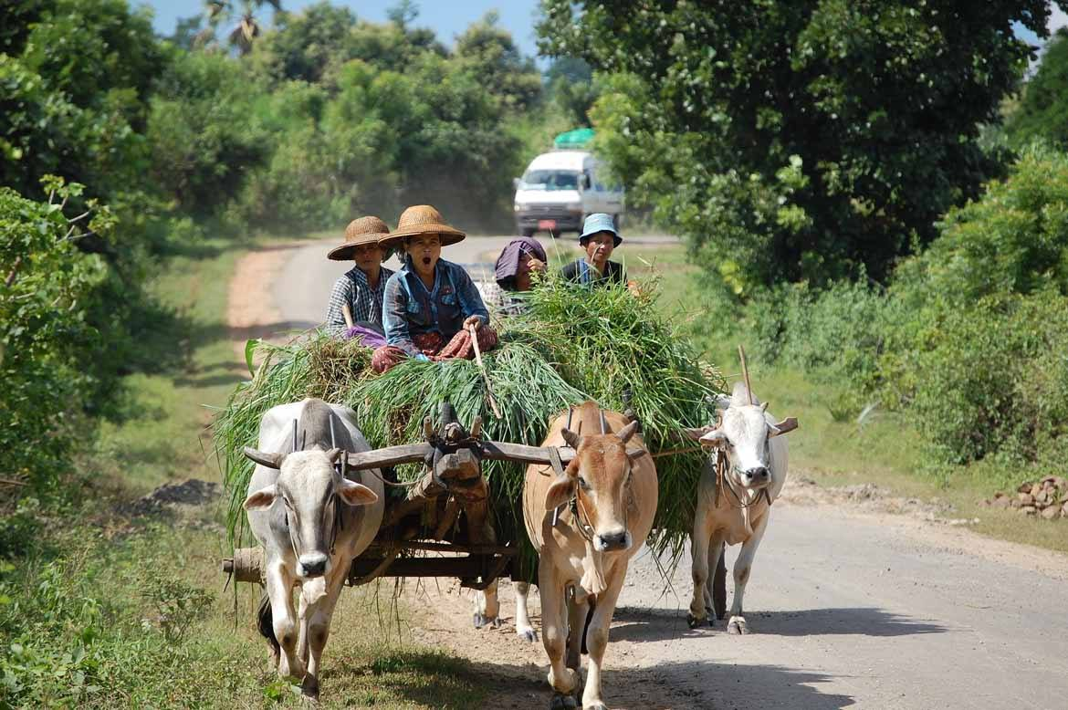 On the way to Bagan