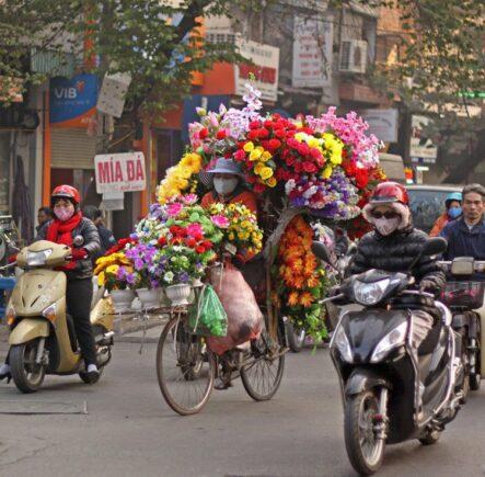On the move in Hanoi, Vietnam