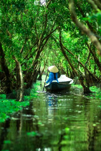 tra su forest vietnam boat on water