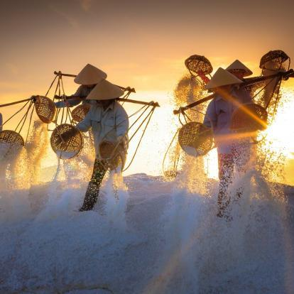 Salt sifting in Vietnam