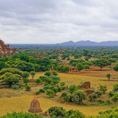 View of Bagan plains