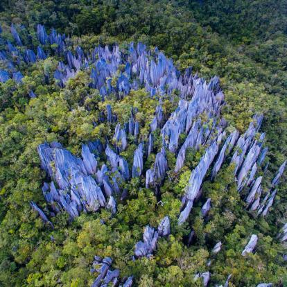 Jagged rock pinnacles shoot out of the jungle at Mulu National Park in Borneo