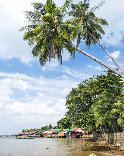 Beach with palm trees at Kep