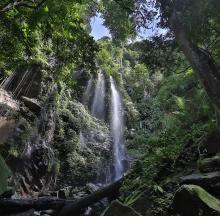 Belum Rainforest waterfall