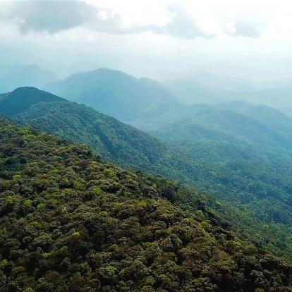 Cloud Forests of Laos