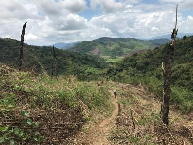 Mountain trails in Nam Et-Phou Louey in Laos