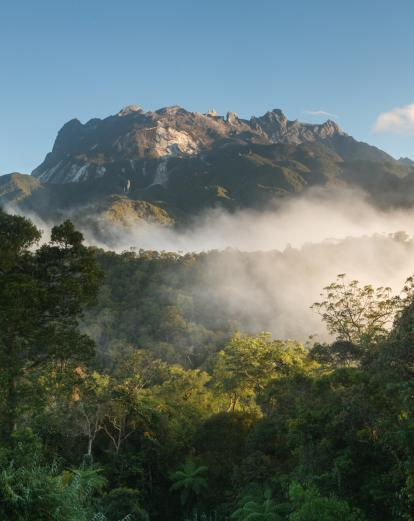 View of Mt Kinabalu from Kinabalu Park
